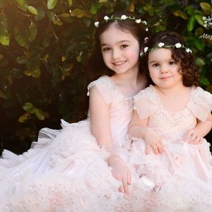 07fec4fa81d9 Best Fairy Dust Wishes Dresses - Gorgeous Blush Pink Flower Girl Dress Size  6